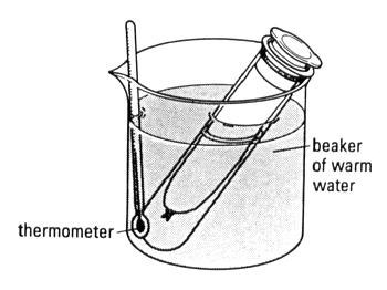 beaker and boiling tube.jpg