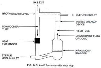 loop fermenter